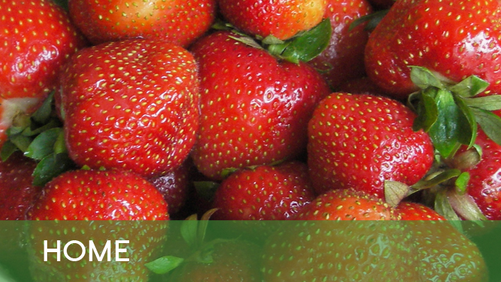 Home - strawberries