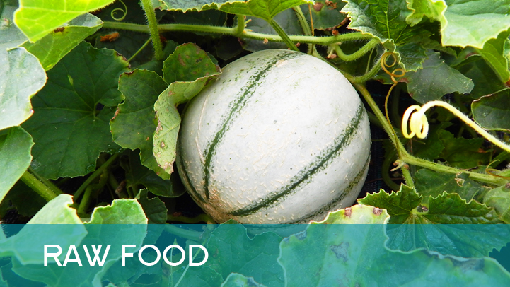 Raw food - a melon outside